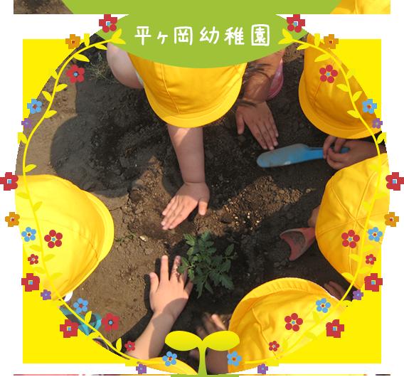 平ヶ岡幼稚園